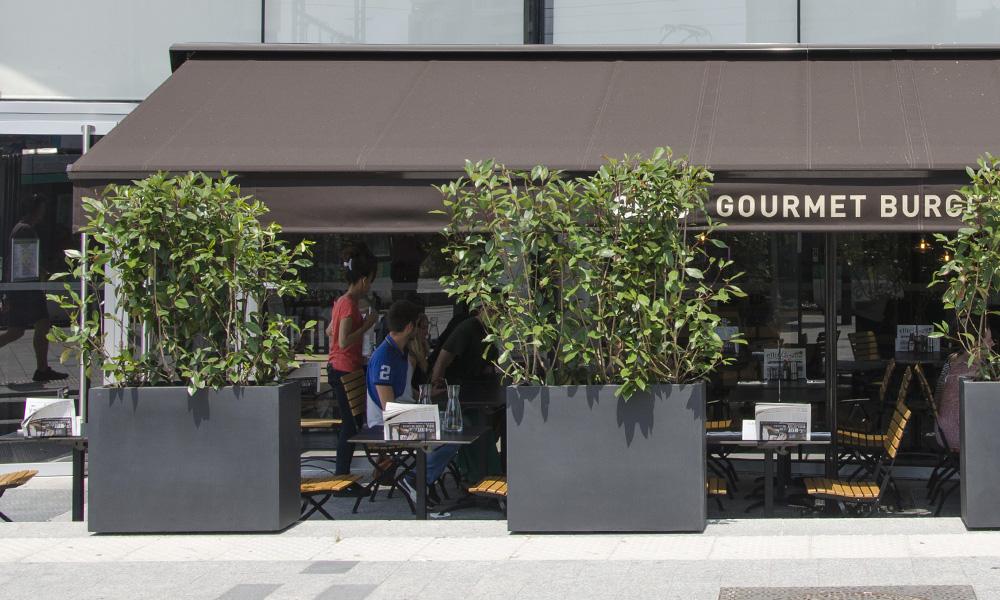terrasse restaurant en été, paris, soleil, chaleur , canicule