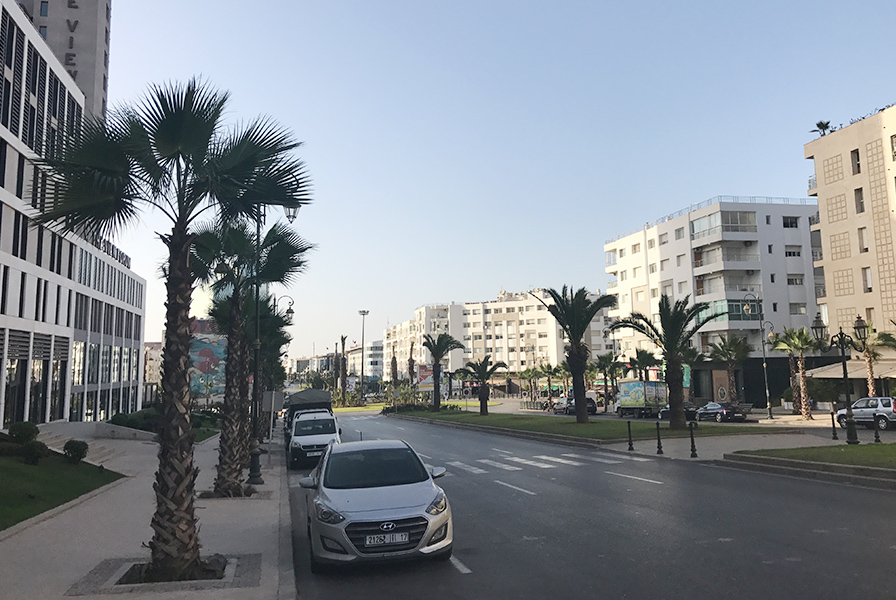 Rabat, Maroc, rue, urbain, vue, palmier, soleil, street art