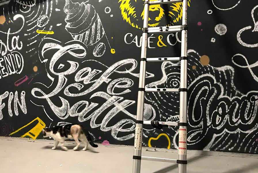 chat, passe, fresque, chantier, déco, décoration, art