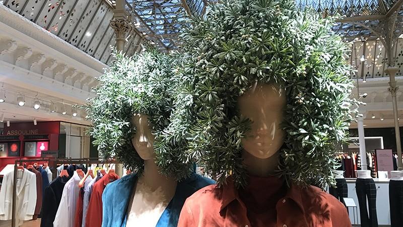 mannequin, personnage, féminins, mode, afro, fleurs, plantes, nature