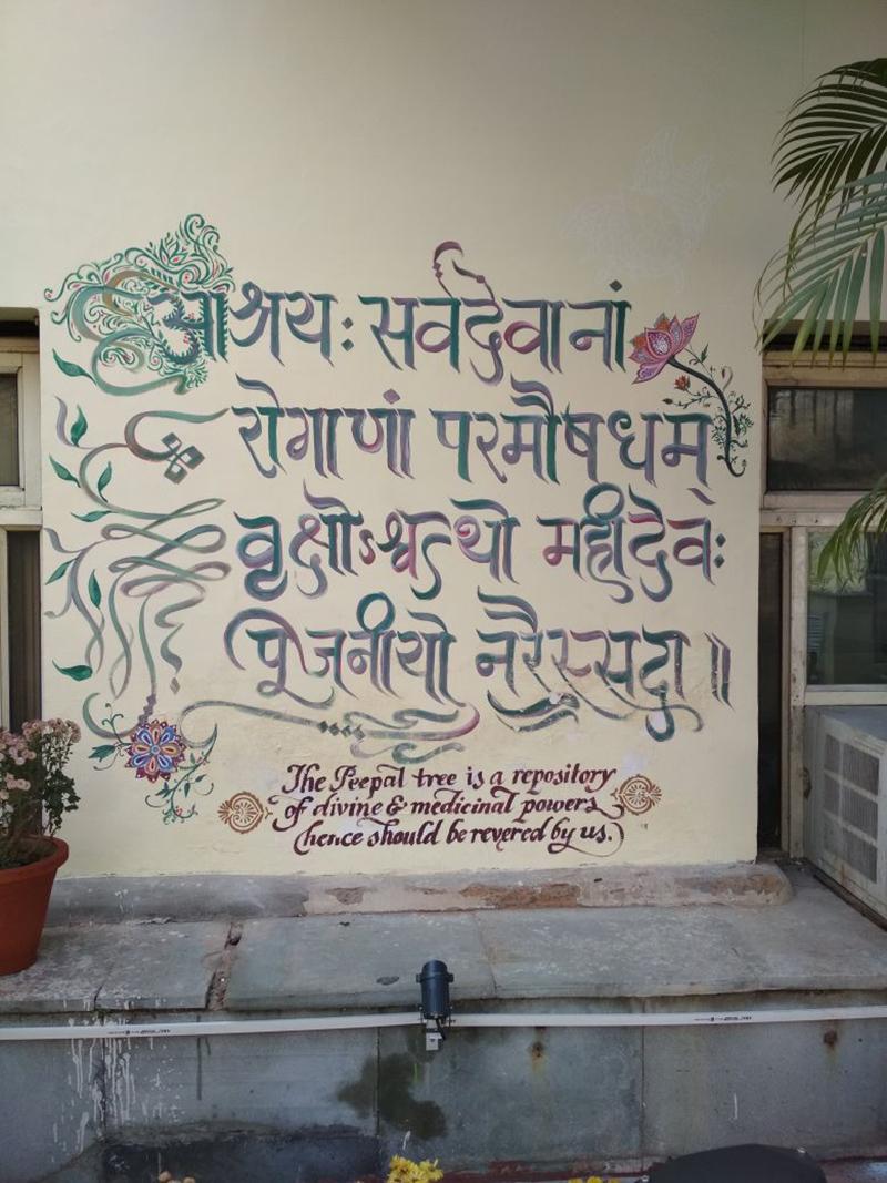 calligraphie, indienne, shipra, Dutta, mur, inde