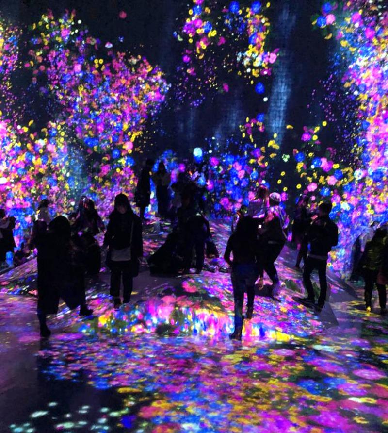 Teamlab, borderless, Japon, Tokyo, art, contemporain