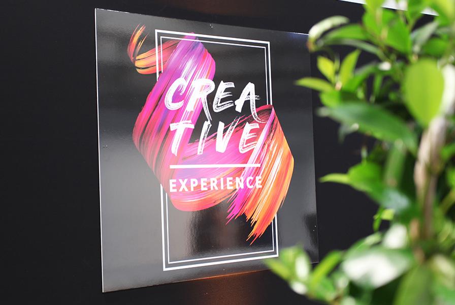 creative, experience, charte, graphique, graphique, pinceau, couleurs