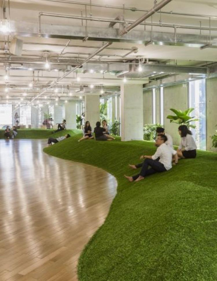 plantes, gazon, herbes parc, intérieur, installation, florale, bureau