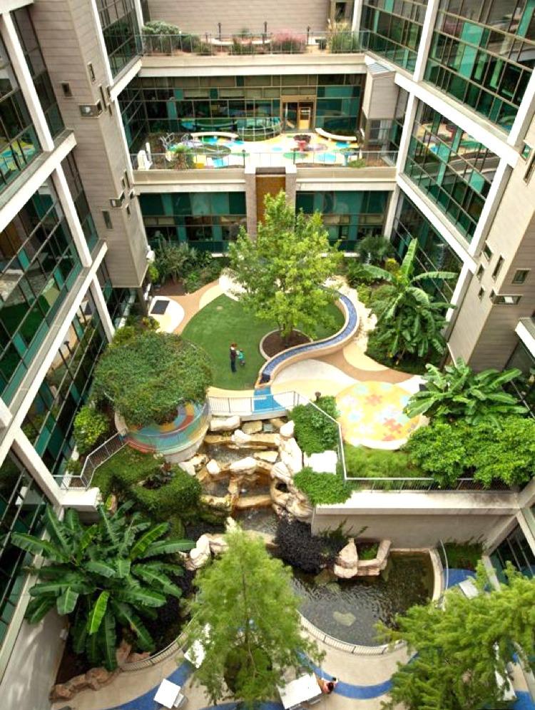 parc, exotique, bureaux, Paris, arbres, installations, florales